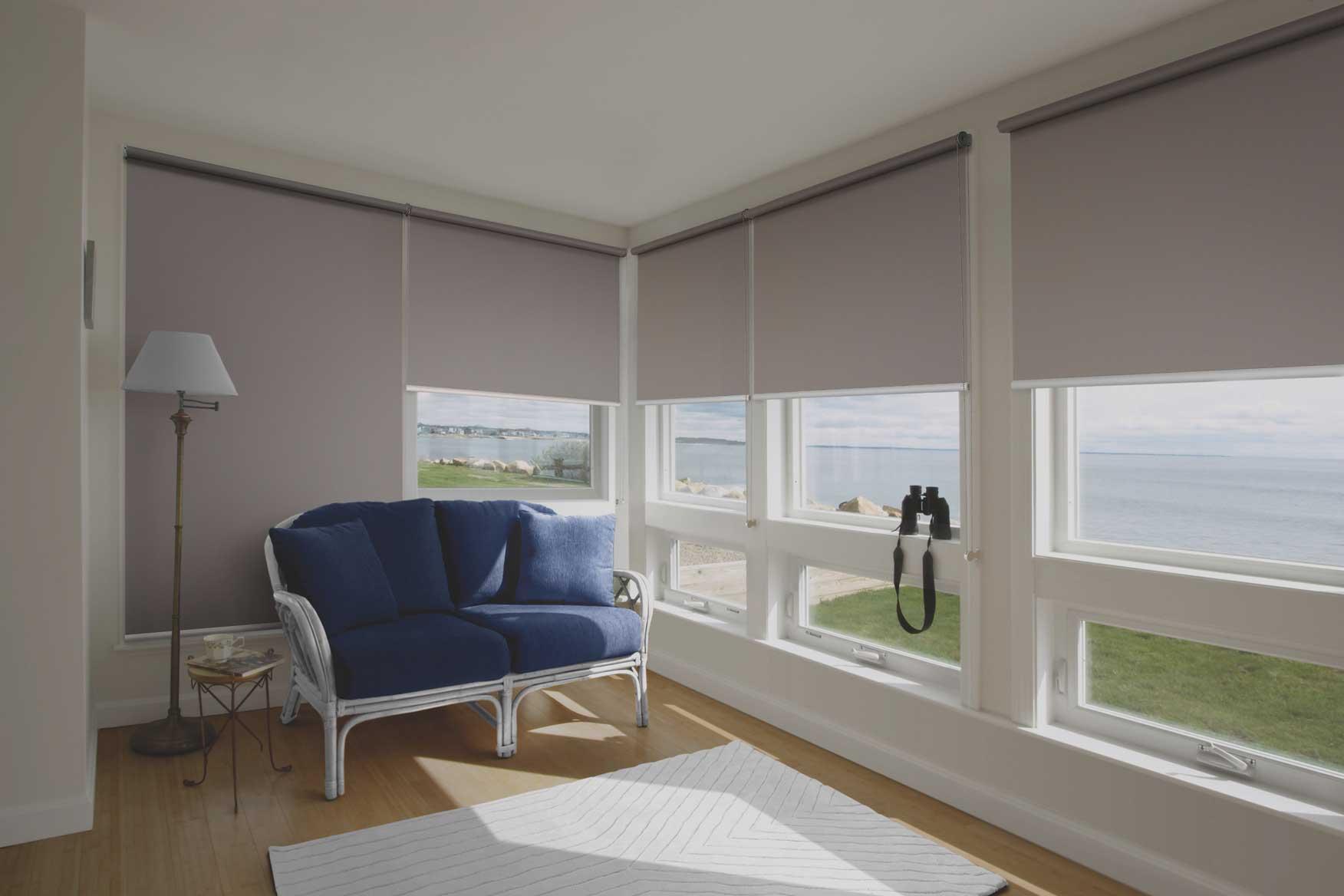 blackout blinds home